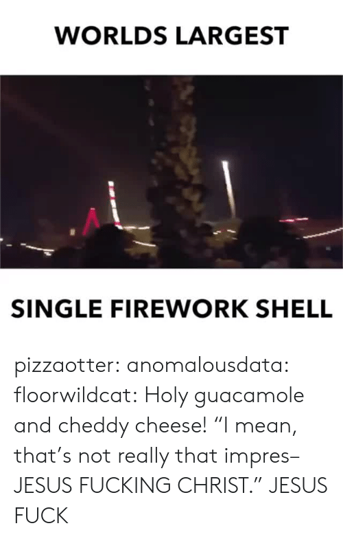 """Guacamole: WORLDS LARGEST  SINGLE FIREWORK SHELL pizzaotter:  anomalousdata:  floorwildcat: Holy guacamole and cheddy cheese! """"I mean, that's not really that impres–JESUS FUCKING CHRIST.""""   JESUS FUCK"""