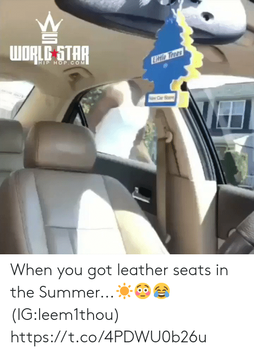 Hip Hop: WORLE STAR  HIP HOP.COM  Litio Trees When you got leather seats in the Summer...☀️😳😂 (IG:leem1thou) https://t.co/4PDWU0b26u