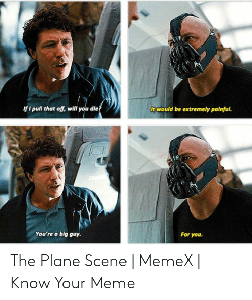 Youre A Big Guy For You: would be extremely painful.  f i pull that off, will you die?  You're a big guy  For you. The Plane Scene | MemeX | Know Your Meme