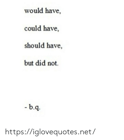 B&q, Net, and Did: would have,  could have,  should have,  but did not.  -b.q. https://iglovequotes.net/
