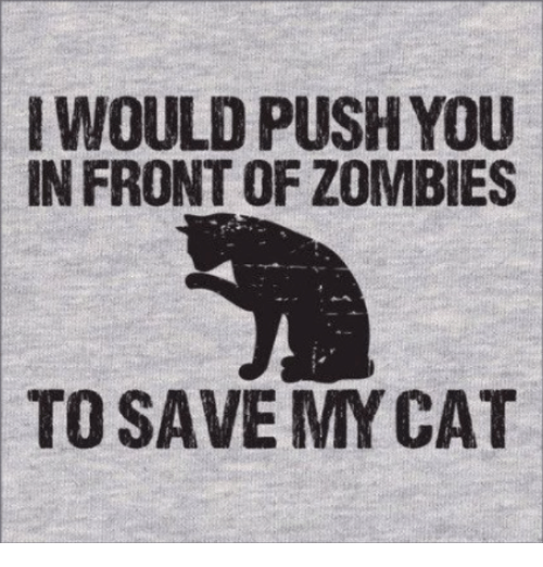 mycat: WOULD PUSH YOU  IN FRONT OF ZOMBIES  TO SAVE MYCAT
