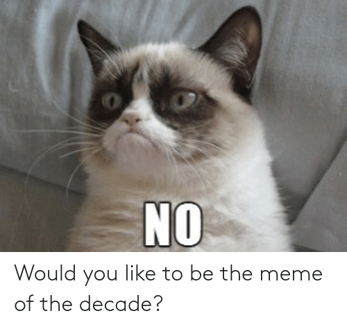 Would You: Would you like to be the meme of the decade?