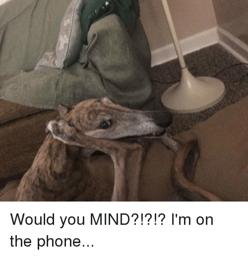 Phone, Mind, and You