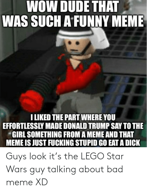 Bad, Donald Trump, and Dude: WOW DUDE THAT  WAS SUCH A FUNNY MEME  LIKED THE PART WHERE YOU  EFFORTLESSLY MADE DONALD TRUMP SAY TO THE  GIRL SOMETHING FROM A MEME AND THAT  MEME IS JUST FUCKING STUPID GO EAT A DICK Guys look it's the LEGO Star Wars guy talking about bad meme XD