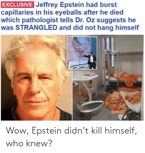 kill: Wow, Epstein didn't kill himself, who knew?