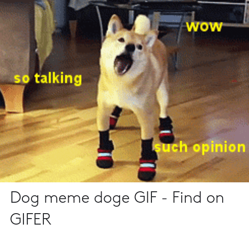 Doge Gif: wow  so talking  such opinion Dog meme doge GIF - Find on GIFER