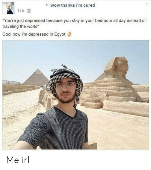 """Wow Thanks: wow thanks i'm cured  11 h  You're just depressed because you stay in your bedroom all day instead of  traveling the world""""  Cool now lI'm depressed in Egypt d Me irl"""