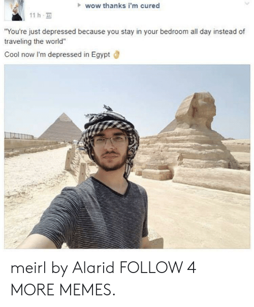 """Wow Thanks: wow thanks i'm cured  11 h  """"You're just depressed because you stay in your bedroom all day instead of  traveling the world""""  Cool now I'm depressed in Egypt meirl by Alarid FOLLOW 4 MORE MEMES."""