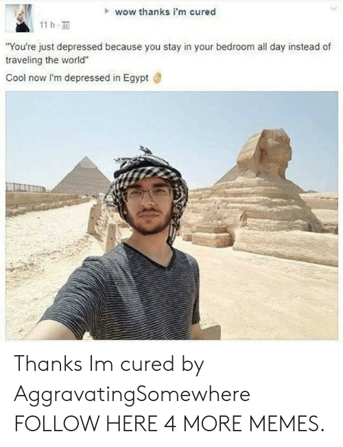 """Wow Thanks: wow thanks i'm cured  11h.  You're just depressed because you stay in your bedroom all day instead of  traveling the world""""  Cool now I'm depressed in Egypt Thanks Im cured by AggravatingSomewhere FOLLOW HERE 4 MORE MEMES."""