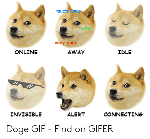Doge Gif: wow  very gohe  ONLINE  IDLE  AWAY  CONNECTING  INVISIBLE  ALERT Doge GIF - Find on GIFER
