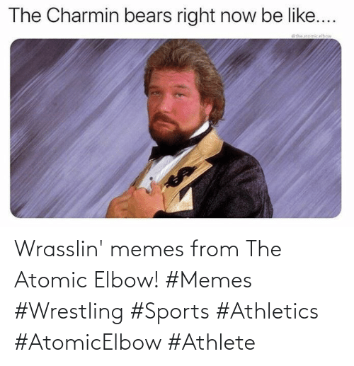 elbow: Wrasslin' memes from The Atomic Elbow! #Memes #Wrestling #Sports #Athletics #AtomicElbow #Athlete