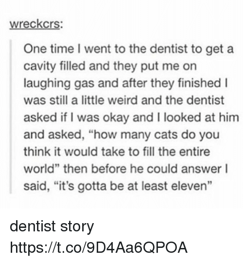 "cavity: wreckcrs:  One time went to the dentist to get a  cavity filled and they put me on  laughing gas and after they finished I  was still a little weird and the dentist  asked if I was okay and I looked at him  and asked, ""how many cats do you  think it would take to fill the entire  world"" then before he could answer I  said, ""it's gotta be at least eleven"" dentist story https://t.co/9D4Aa6QPOA"