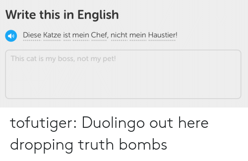 my boss: Write this in English  Diese Katze ist mein Chef, nicht mein Haustier!  This cat is my boss, not my pet! tofutiger: Duolingo out here dropping truth bombs
