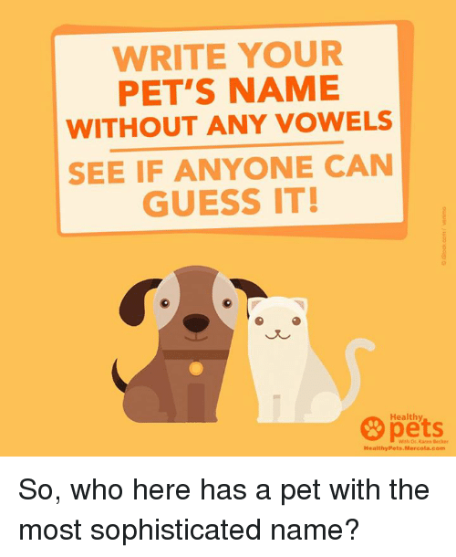 pet names: WRITE YOUR  PET'S NAME  WITHOUT ANY VOWELS  SEE IF ANYONE CAN  GUESS IT!  Healthy  Healthy Pets  a Comm So, who here has a pet with the most sophisticated name?