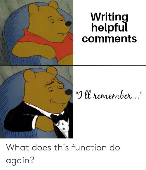 """What Does, Function, and Remember: Writing  helpful  comments  9ll remember.."""" What does this function do again?"""