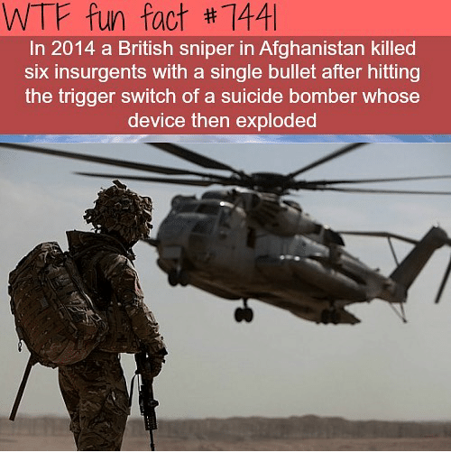 Suicide Bomber: WTF fun fact #1441  In 2014 a British sniper in Afghanistan killed  six insurgents with a single bullet after hitting  the trigger switch of a suicide bomber whose  device then exploded