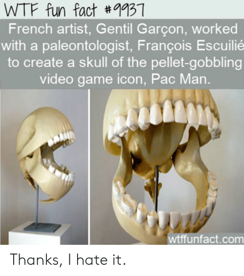 garcon: WTF fun fact #9937  French artist, Gentil Garçon, worked  with a paleontologist, François Escuilié  to create a skull of the pellet-gobbling  video game icon, Pac Man.  wtffunfact.com Thanks, I hate it.