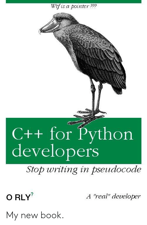 "writing: Wtf is a pointcr???  C++ for Python  developers  Stop writing in pseudocode  A ""real"" developer  O RLY My new book."