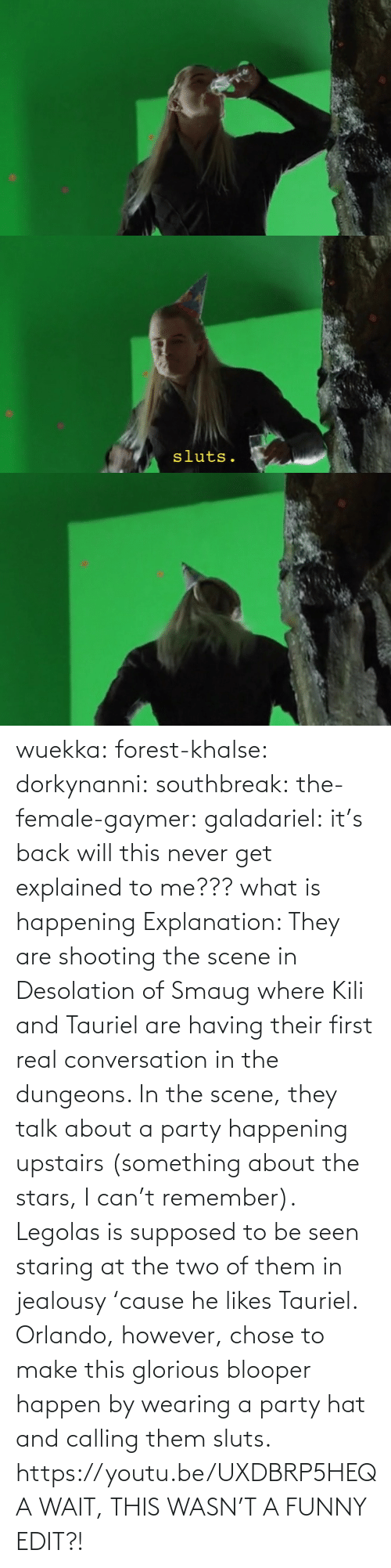 What Is: wuekka: forest-khalse:   dorkynanni:  southbreak:   the-female-gaymer:   galadariel:  it's back   will this never get explained to me???    what is happening    Explanation:  They are shooting the scene in Desolation of Smaug where Kili and Tauriel are having their first real conversation in the dungeons.  In the scene, they talk about a party happening upstairs (something about the stars, I can't remember). Legolas is supposed to be seen staring at the two of them in jealousy 'cause he likes Tauriel.  Orlando, however, chose to make this glorious blooper happen by wearing a party hat and calling them sluts.    https://youtu.be/UXDBRP5HEQA    WAIT, THIS WASN'T A FUNNY EDIT?!