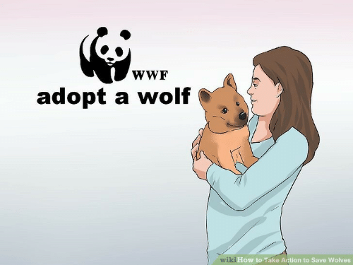 wiki how: wWF  adopt a wolf  wiki How to Take Action to Save Wolves