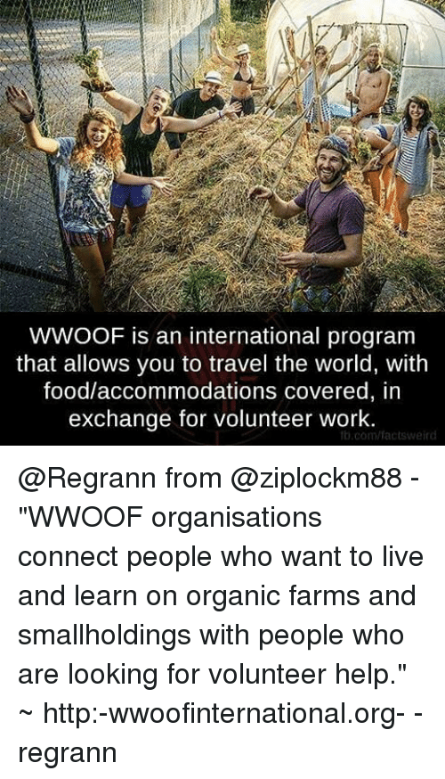 """accommodating: WWOOF is an international program  that allows you to travel the world, with  food/accommodations covered, in  exchange for volunteer work.  b.com/facts weird @Regrann from @ziplockm88 - """"WWOOF organisations connect people who want to live and learn on organic farms and smallholdings with people who are looking for volunteer help."""" ~ http:-wwoofinternational.org- - regrann"""