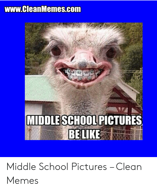 Middle School Memes: www.CleanMemes.com  MİDDLESCHOOLPICTURES Middle School Pictures – Clean Memes