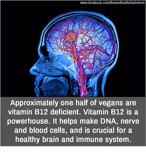 b12: www.facebook.com/themedicalfactsdotcom  Approximately one half of vegans are  vitamin B12 deficient. Vitamin B12 is a  powerhouse. It helps make DNA, nerve  and blood cells, and is crucial for a  healthy brain and immune system.