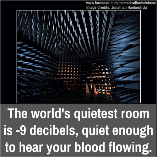 decibels: www.facebook.com/themedicalfactsdotcom  Image Credits: Jonathan Haeberlfickr  The world's quietest room  is -9 decibels, quiet enough  to hear your blood flowing
