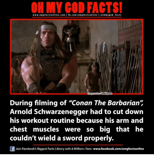 "Arnold Schwarzenegger, Memes, and Library: www.omg facts online.com I fb.com/orm g facts online I eohmygod facts  GeckTyran  During filming of ""Conan The Barbarian""  Arnold Schwarzenegger had to cut down  his workout routine because his arm and  chest muscles were so big that he  couldn't wield a sword properly  Join Facebook's Biggest Facts Library with 6 Million+ Fans- www.facebook.com/omgfactsonline"