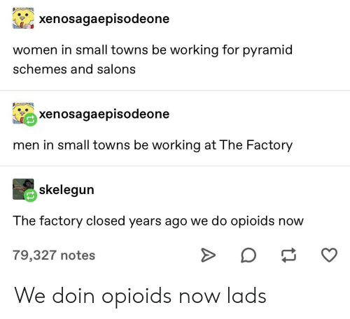 lads: xenosagaepisodeone  women in small towns be working for pyramid  schemes and salons  xenosagaepisodeone  men in small towns be working at The Factory  skelegun  The factory closed years ago we do opioids now  O  79,327 notes We doin opioids now lads