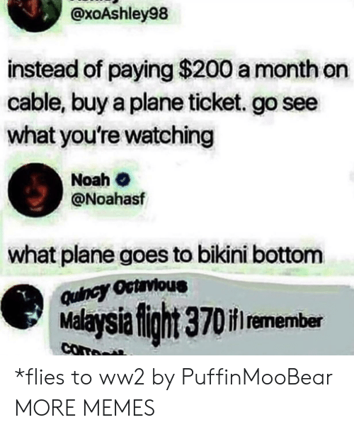 Malaysia: @xoAshley98  instead of paying $200 a month on  cable, buy a plane ticket. go see  what you're watching  Noah  @Noahasf  what plane goes to bikini bottom  Quincy Octrvious  Malaysia fight 370if remember  com *flies to ww2 by PuffinMooBear MORE MEMES