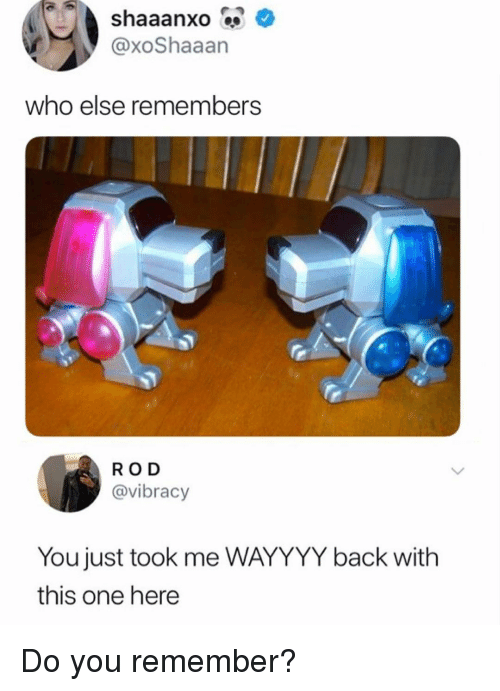 Memes, Back, and 🤖: @xoShaaan  who else remembers  RO D  @vibracy  You just took me WAYYYY back with  this one here Do you remember?