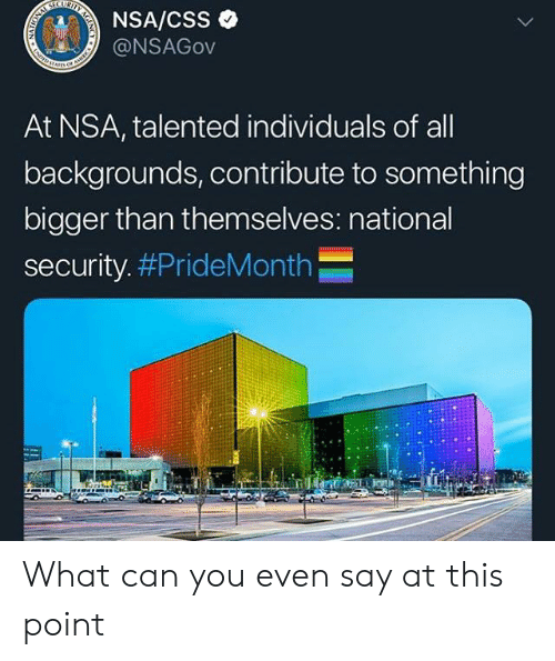 Nsa, Css, and Can: Y  ICUR  NSA/CSS  @NSAGOV  At NSA, talented individuals of all  backgrounds, contribute to something  bigger than themselves: national  security. #PrideMonth  NATION  A What can you even say at this point