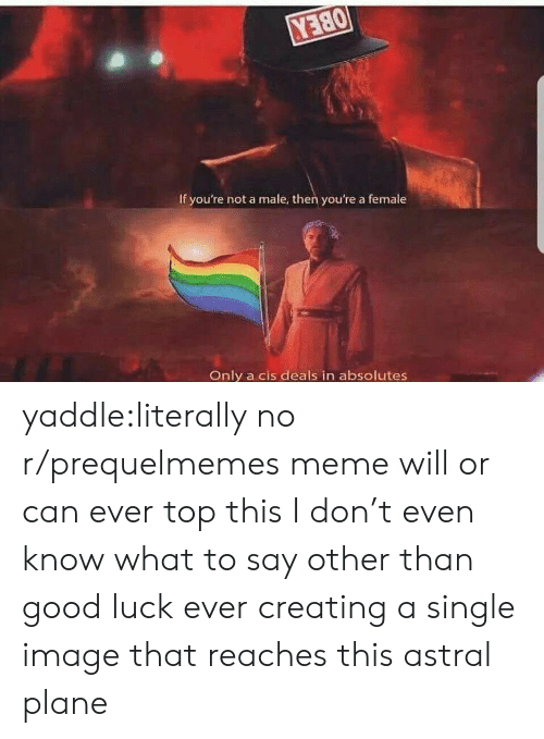Prequelmemes: Y380  If you're not a male, then you're a female  Only a cis deals in absolutes yaddle:literally no r/prequelmemes meme will or can ever top this I don't even know what to say other than good luck ever creating a single image that reaches this astral plane