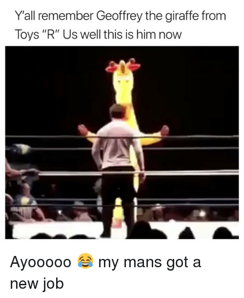 """Funny, Toys R Us, and Giraffe: Y'all remember Geoffrey the giraffe from  Toys """"R"""" Us well this is him now Ayooooo 😂 my mans got a new job"""