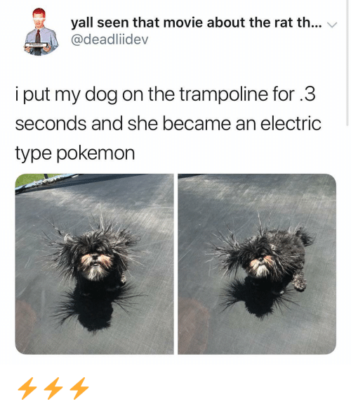 Memes, Pokemon, and Movie: yall seen that movie about the rat th... V  @deadliidev  i put my dog on the trampoline for.3  seconds and she became an electric  type pokemon ⚡️⚡️⚡️
