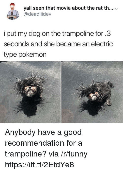 Funny, Pokemon, and Good: yall seen that movie about the rat th... V  @deadliidev  i put my dog on the trampoline for .3  seconds and she became an electric  type pokemon Anybody have a good recommendation for a trampoline? via /r/funny https://ift.tt/2EfdYe8