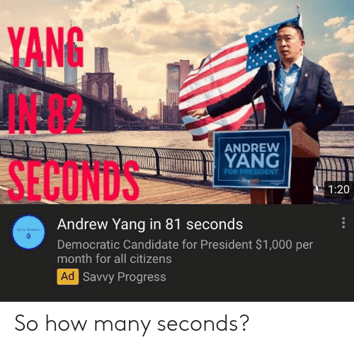 How, President, and Citizens: YANG  ANDREW  YANG  FOR PRESIDENT  SECUNDS  1:20  Andrew Yang in 81 seconds  savvy Prgrs  Democratic Candidate for President $1,000 per  month for all citizens  Ad Savvy Progress So how many seconds?