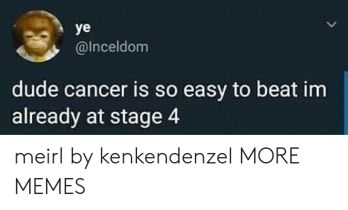 Dank, Dude, and Memes: ye  @Inceldom  dude cancer is so easy to beat im  already at stage 4 meirl by kenkendenzel MORE MEMES