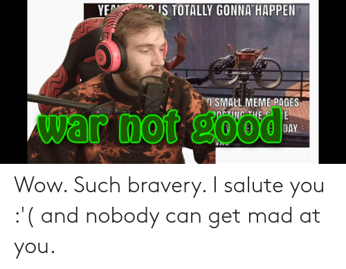 I Salute You: YE  IS TOTALLY GONNA HAPPEN  pus  O SMALL MEME PAGES  PpeTING THE C E  war not good  DAY Wow. Such bravery. I salute you :'( and nobody can get mad at you.