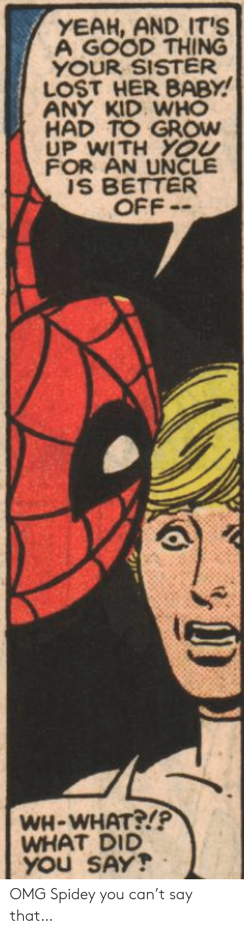 did-you-say: YEAH, AND IT'S  A GOOD THING  YOUR SISTER  LOST HER BABY!  ANY KID WHO  HAD TO GROW  UP WITH YOU  FOR AN UNCLE  IS BETTER  OFF-  WH-WHAT?!P  WHAT DID  YOU SAY! OMG Spidey you can't say that…