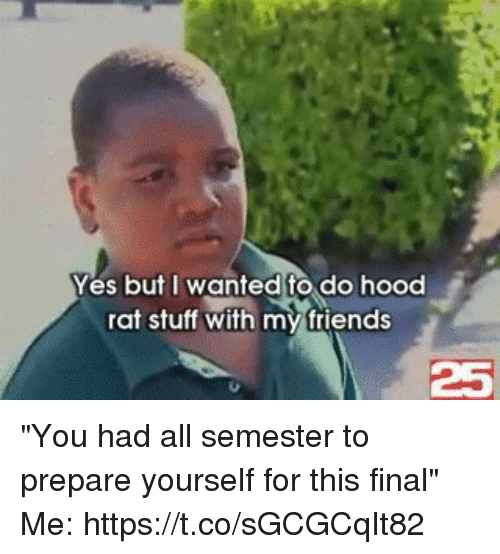"Friends, Funny, and Stuff: Yes but I wanted to do hood  rat stuff with my friends  25 ""You had all semester to prepare yourself for this final""  Me: https://t.co/sGCGCqIt82"