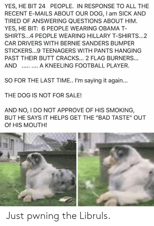 """Bad, Bernie Sanders, and Butt: YES, HE BIT 24 PEOPLE. IN RESPONSE TO ALL THE  RECENT E-MAILS ABOUT OUR DOG, I am SICK AND  TIRED OF ANSWERING QUESTIONS ABOUT HIM  YES, HE BIT: 6 PEOPLE WEARING OBAMA T-  SHIRTS...4 PEOPLE WEARING HILLARY T-SHIRTS...2  CAR DRIVERS WITH BERNIE SANDERS BUMPER  STICKERS...9 TEENAGERS WITH PANTS HANGING  PAST THEIR BUTT CRACKS... 2 FLAG BURNER...  A KNEELING FOOTBALL PLAYER.  AND  SO FOR THE LAST TIME. I'm saying it again...  THE DOG IS NOT FOR SALE!  AND NO, I DO NOT APPROVE OF HIS SMOKING,  BUT HE SAYS IT HELPS GET THE """"BAD TASTE"""" OUT  Of HIS MOUTH! Just pwning the Libruls."""