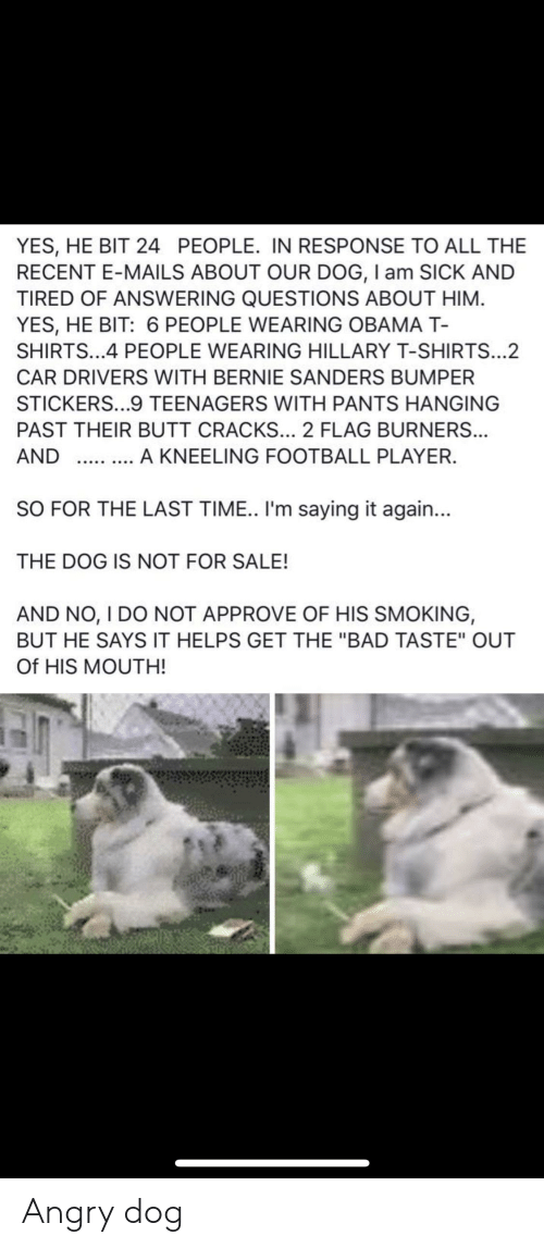 """Bad, Bernie Sanders, and Butt: YES, HE BIT 24 PEOPLE. IN RESPONSE TO ALL THE  RECENT E-MAILS ABOUT OUR DOG, I am SICK AND  TIRED OF ANSWERING QUESTIONS ABOUT HIM  YES, HE BIT: 6 PEOPLE WEARING OBAMA T-  SHIRTS...4 PEOPLE WEARING HILLARY T-SHIRTS...2  CAR DRIVERS WITH BERNIE SANDERS BUMPER  STICKERS...9 TEENAGERS WITH PANTS HANGING  PAST THEIR BUTT CRACKS... 2 FLAG BURNERS...  AND A KNEELING FOOTBALL PLAYER.  SO FOR THE LAST TIME.. I'm saying it again...  THE DOG IS NOT FOR SALE!  AND NO, I DO NOT APPROVE OF HIS SMOKING,  BUT HE SAYS IT HELPS GET THE """"BAD TASTE"""" OUT  Of HIS MOUTH! Angry dog"""