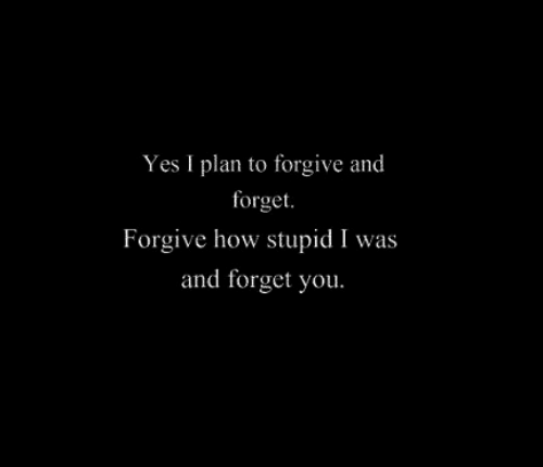 How Stupid: Yes I plan to forgive and  forget  Forgive how stupid I was  and forget you.