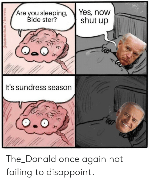 Sundress Season: Yes, now  shut up  Are you sleeping,  Bide-ster?  It's sundress season The_Donald once again not failing to disappoint.
