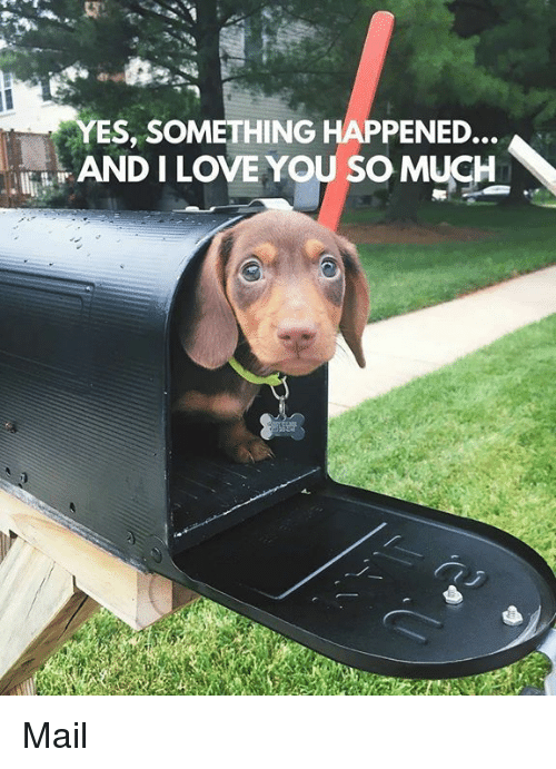 Memes, Mail, and Something Happened: YES, SOMETHING HAPPENED..  ANDILOVE YOU SO MUCH Mail