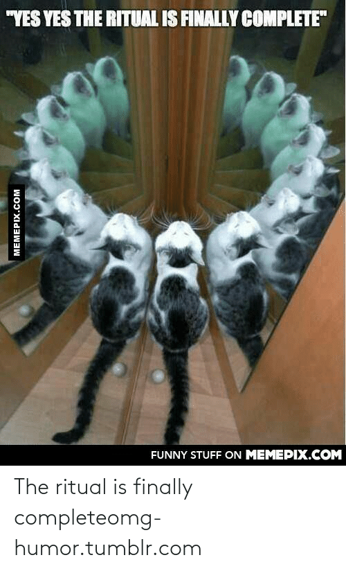 """The Ritual: """"YES YES THE RITUAL IS FINALLY COMPLETE""""  FUNNY STUFF ON MEMEPIX.COM  MEMEPIX.COM The ritual is finally completeomg-humor.tumblr.com"""