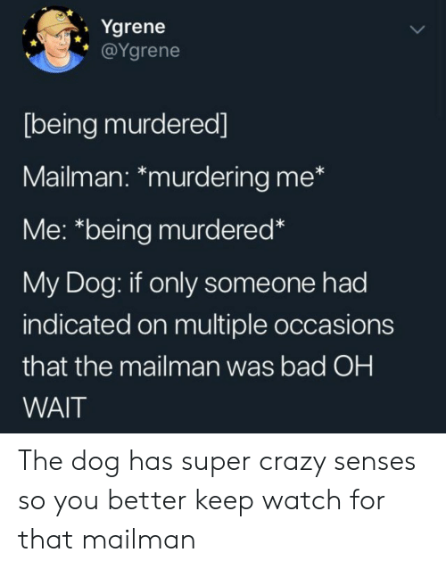 Bad, Crazy, and Watch: Ygrene  @Ygrene  [being murdered]  Mailman: *murdering me*  Me: *being murdered*  My Dog: if only someone had  indicated on multiple occasions  that the mailman was bad OH  WAIT The dog has super crazy senses so you better keep watch for that mailman