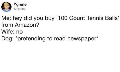 Amazon, Anaconda, and Tennis: Ygrene  @Ygrene  Me: hey did you buy '100 Count Tennis Balls'  from Amazon?  Wife: no  Dog: *pretending to read newspaper*